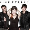 sick_puppies__press_shot_9077_main_with_logo_600dpi_pic_by_goldy_locks