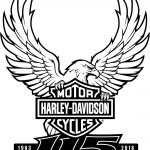Ride with Johnny to the Harley-Davidson 115th Anniversary